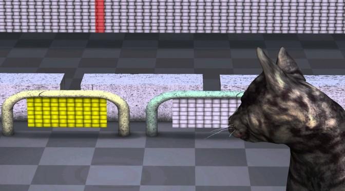 The Most Informative Animation About Quantum Mechanics