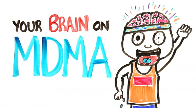 This Is Your Brain On MDMA