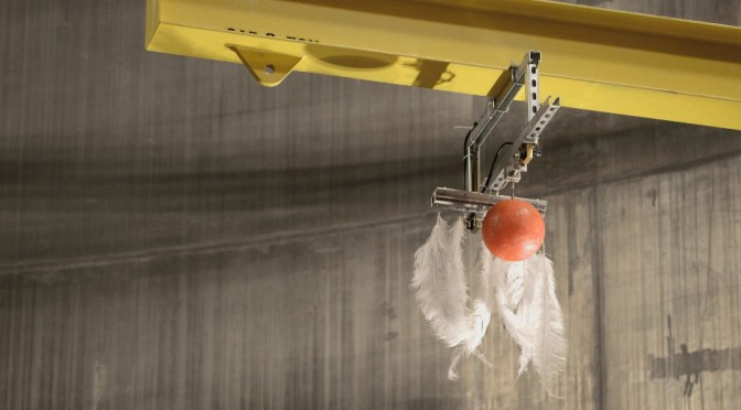 A Bowling Ball and a Feather are Dropped Together in a Vacuum Champer