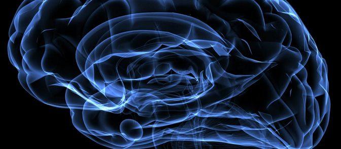 Brain consciousness