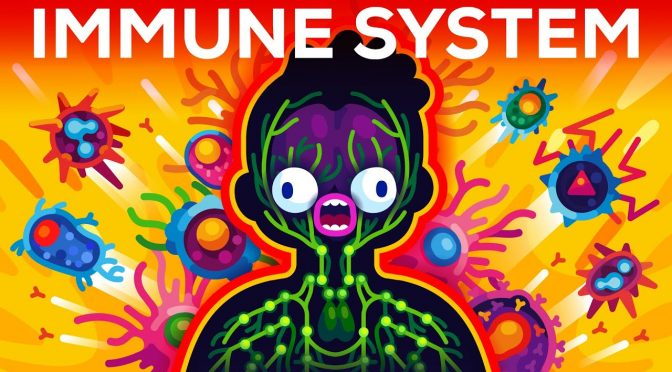 The Immune System Animated by Kurzgesagt